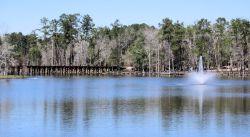 Cherokee Lake Park The Thomasville Rose Garden